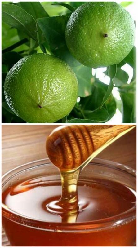 bergamot honey