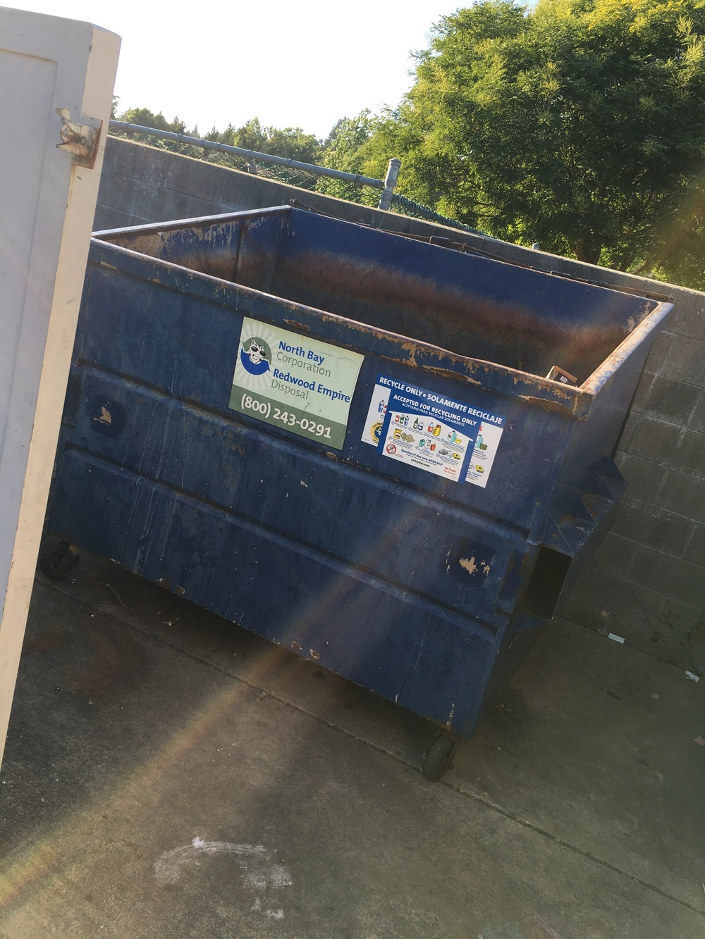 But before my trap came by mail order , I was walking by one morning and literally saw one of the smaller babies jump into the dumpster in his rush to hide from me .   Oh shoot !