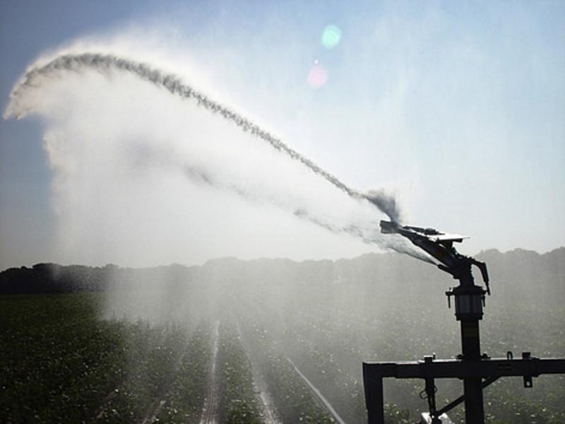 Water plannen voor de agrarische sector verplicht