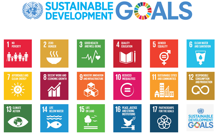 The Sustainable Development Goals. Source:  United Nations System Staff College
