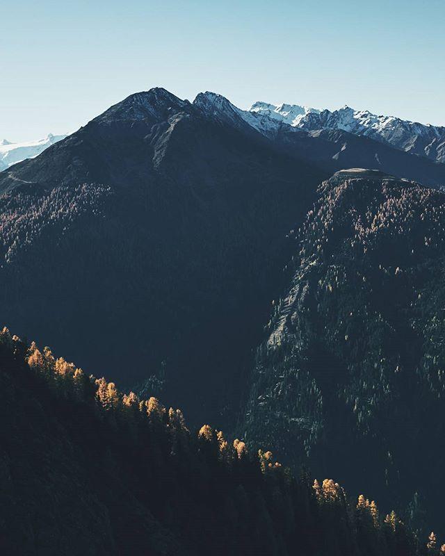 Treeline #indiansummer #tirol #visittirol #kaunertal #hiking #neverstopexploring