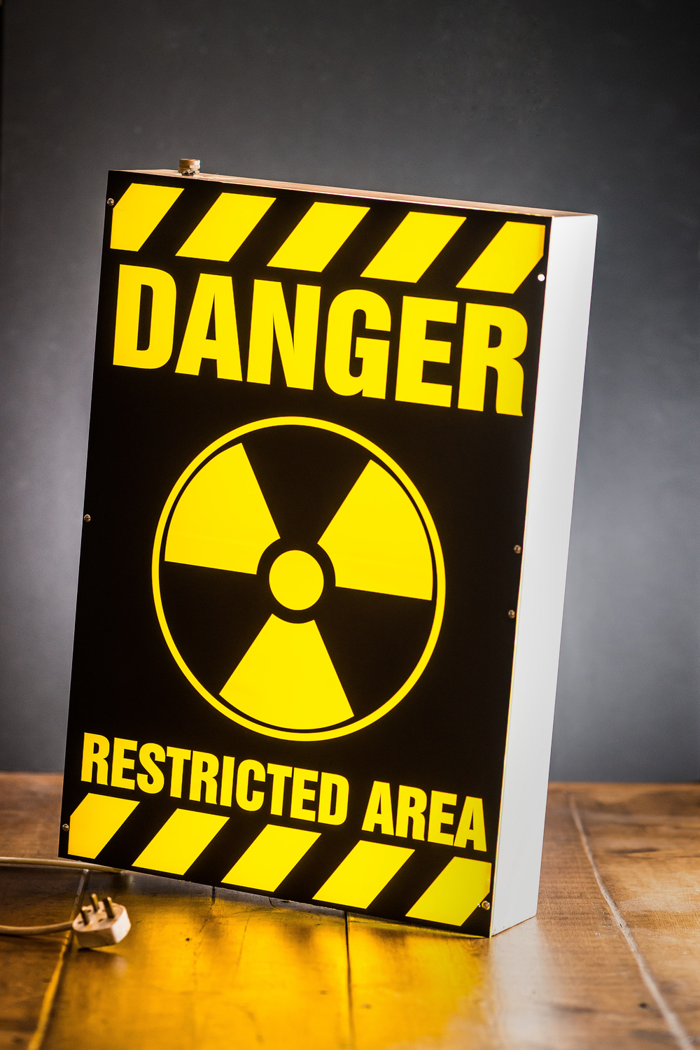 Danger Restricted Area Light Box