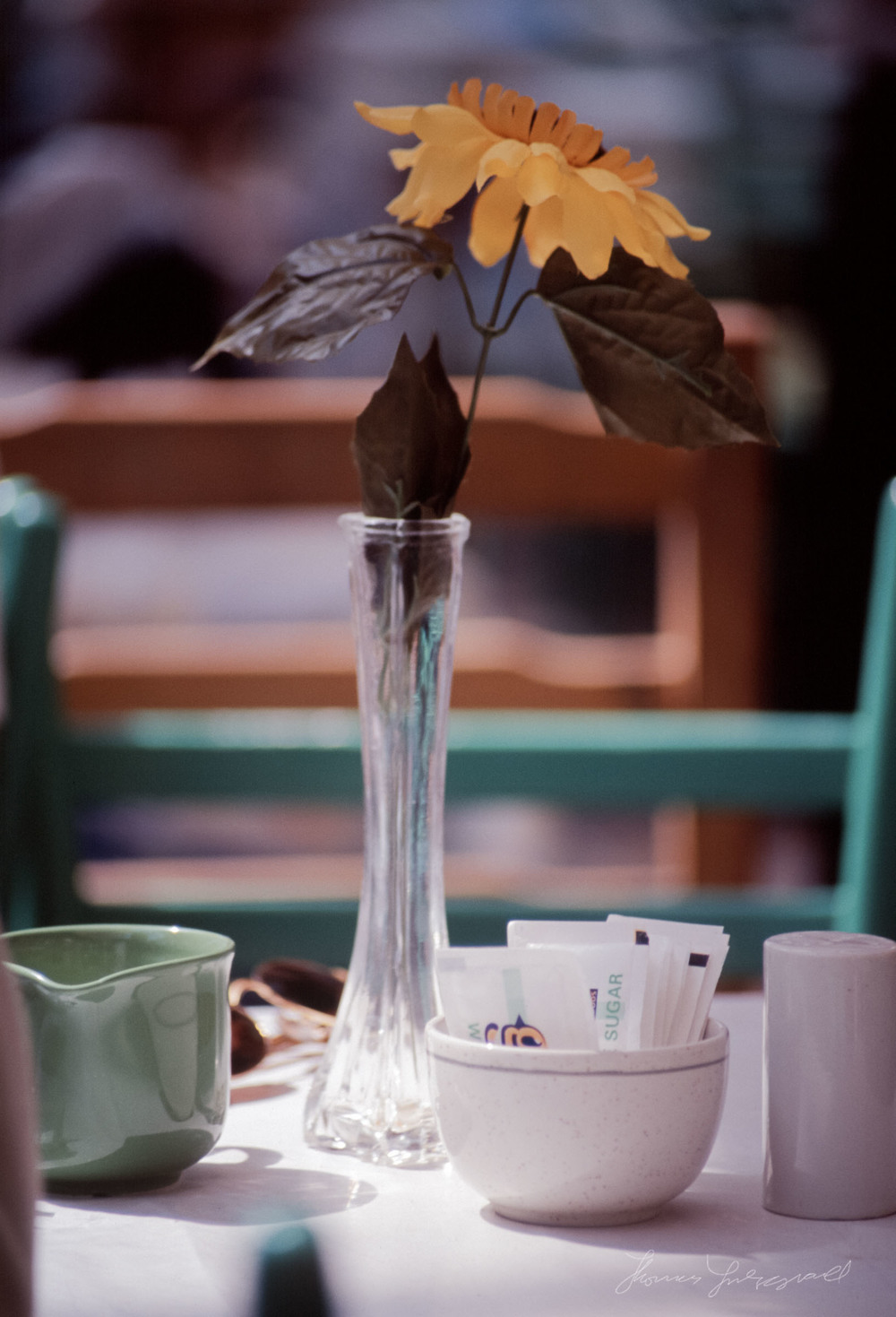 flower-in-vase.jpg