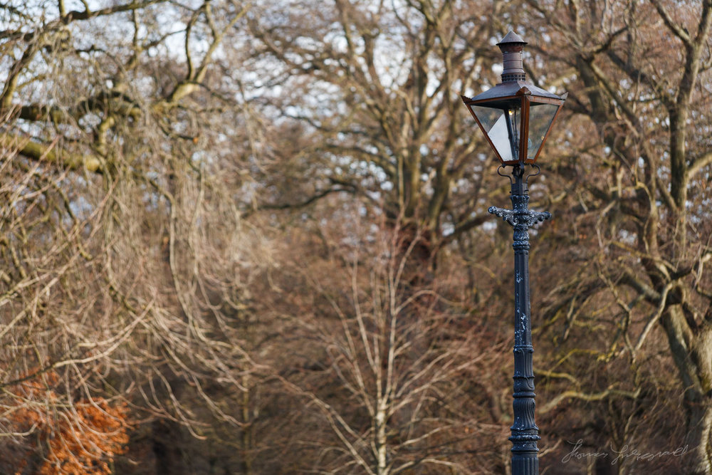 Ornate Street Lamp in the Phoenix Park in Dublin