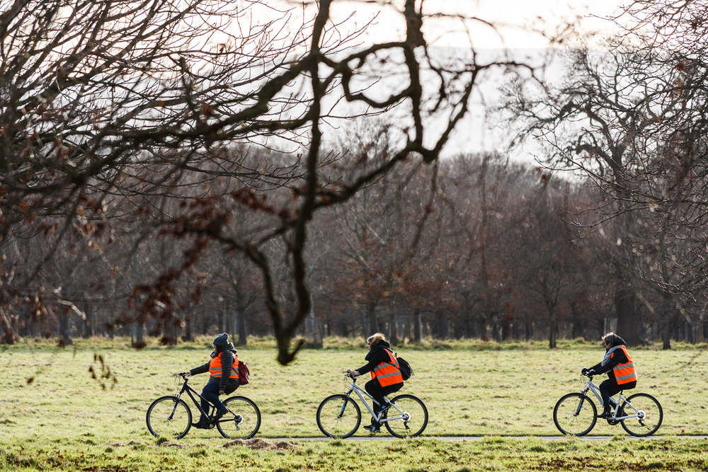 Cyclists in the Phoenix Park in Dublin