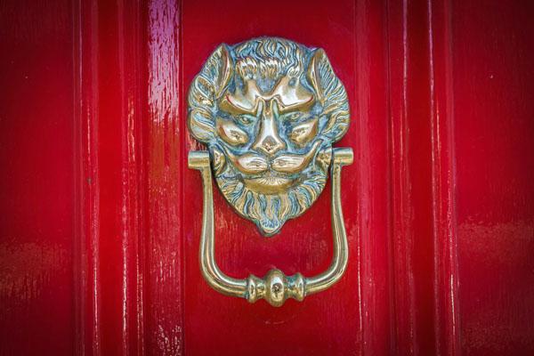 Lion on Red Door
