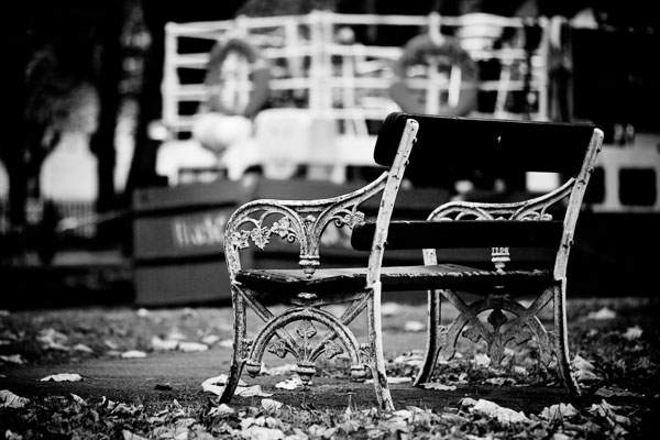 Old Bench by the Canal