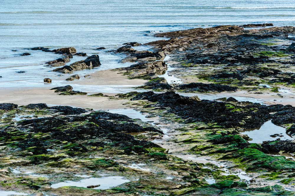 Rocky Shoreline at Malahide, North Co. Dublin
