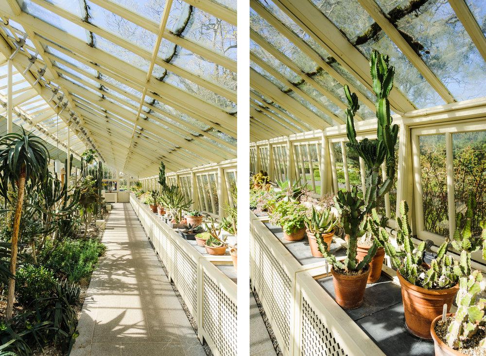 botanic-Two-Up-07.jpg