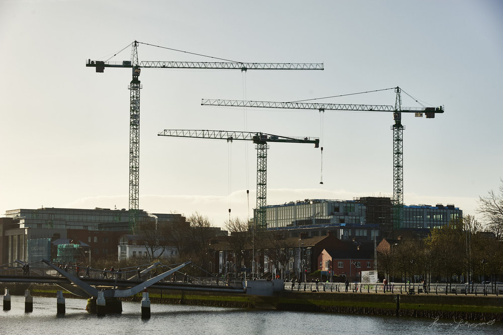 Cranes over Dublin in the morning light
