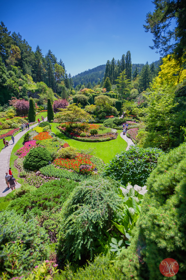 A Short Trip to Butchart Gardens in Victoria - Travel Photography ...