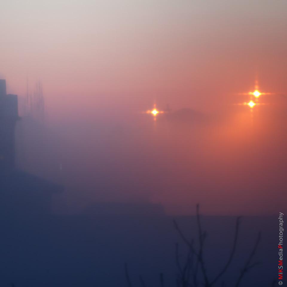Foggy suburbia