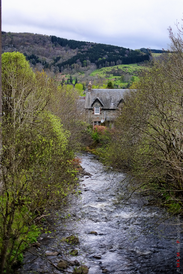 house stream scotland