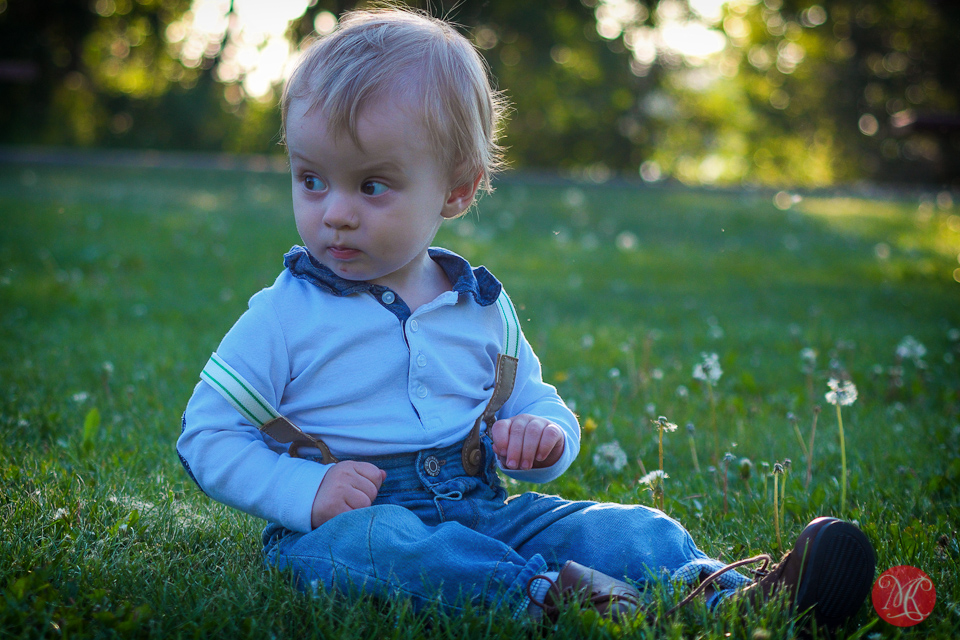 child grass sunset boy family photographer edmonton