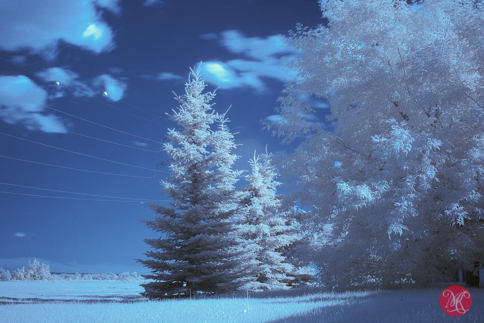 landscape infrared edmonton photography