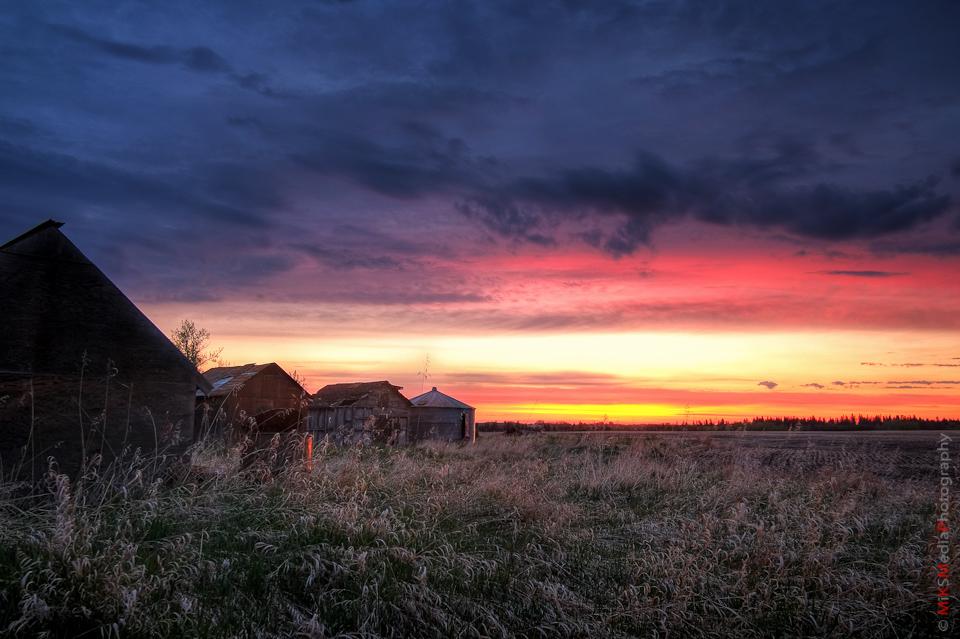 sunrise alberta edmonton photographer