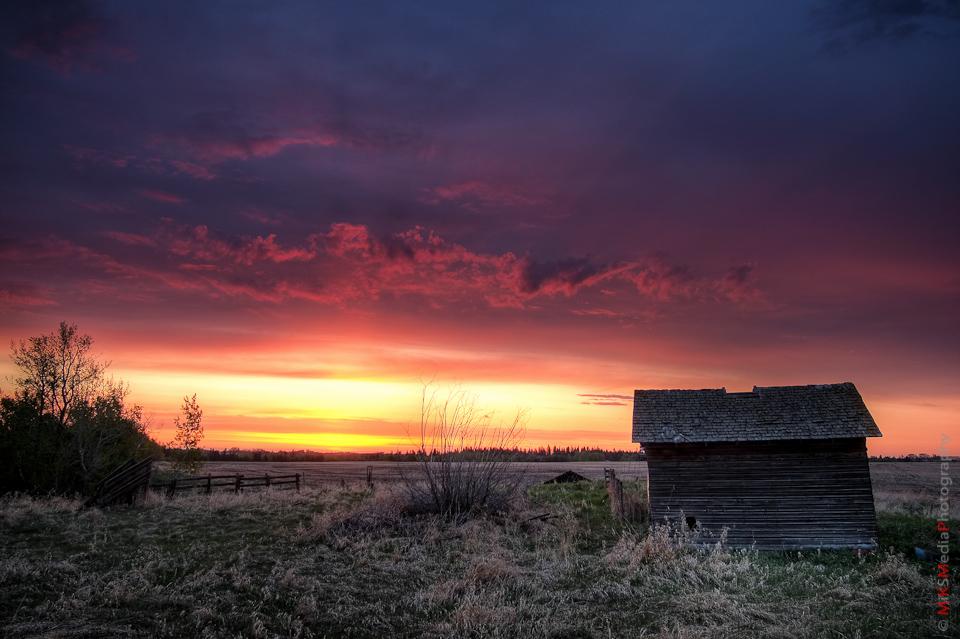 alberta sunrise old farm landscape