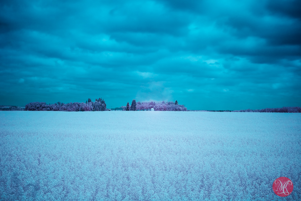4 infrared cloudy landscape alberta photographer
