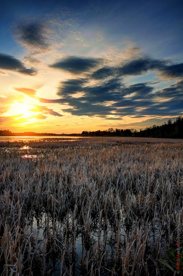 alberta sunset lake sky