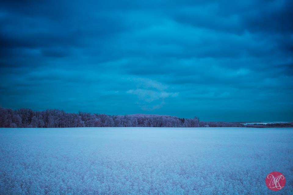 5 landscape alberta infrared