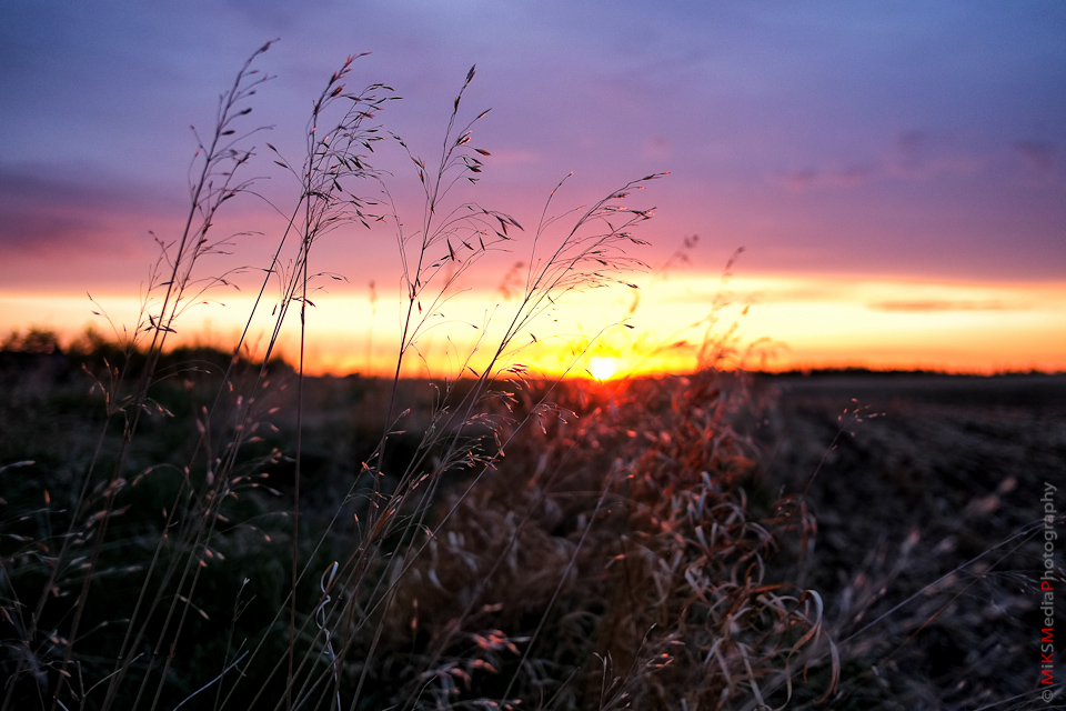 prairie landscape alberta photo