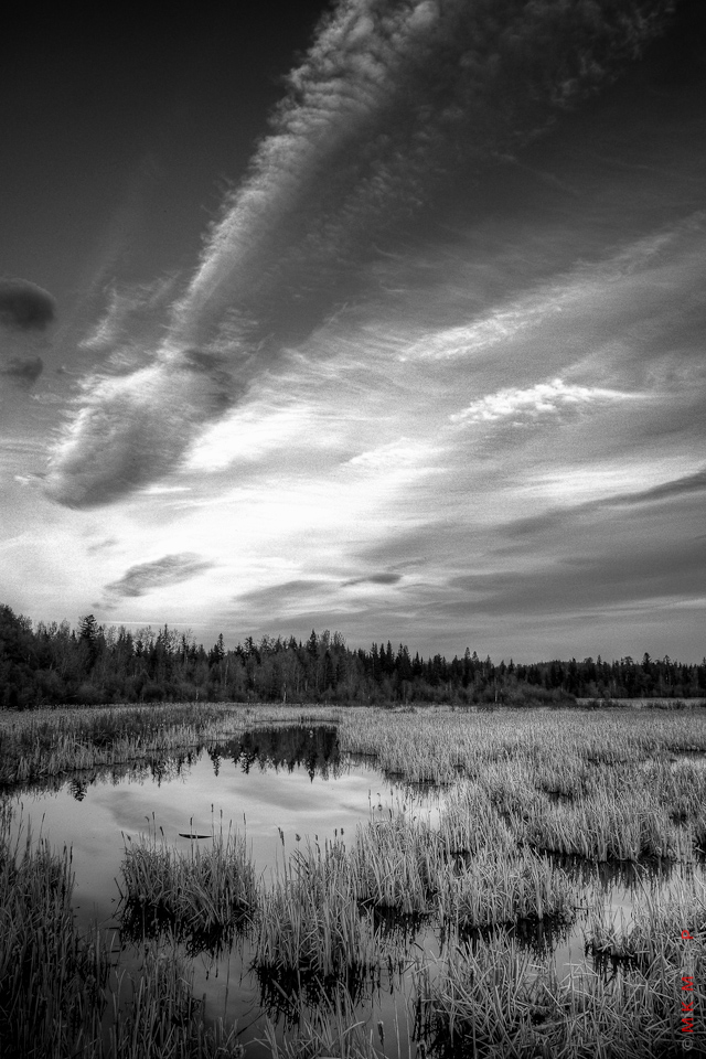 landscape black white alberta photographer