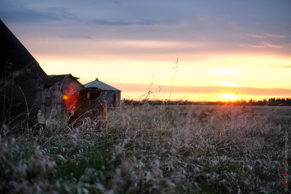 old farm alberta landscape photography
