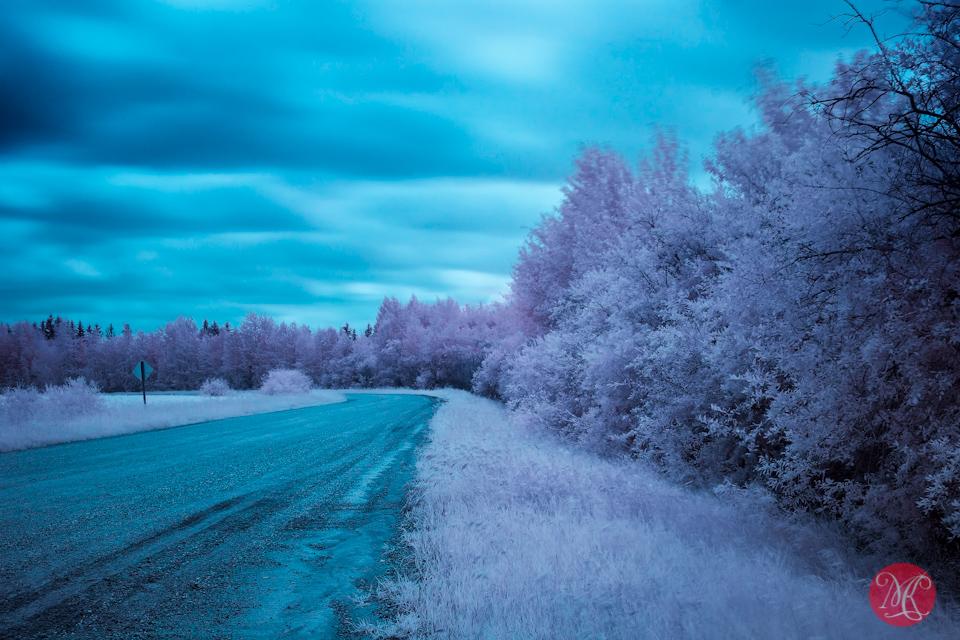 7 landscape alberta infrared