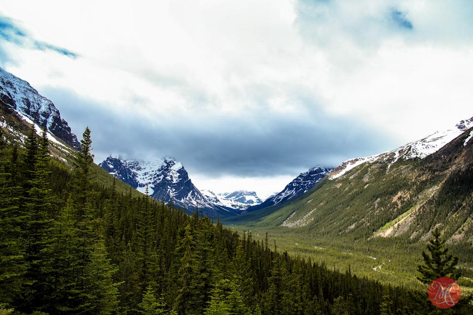 valley jasper mountains landscape alberta