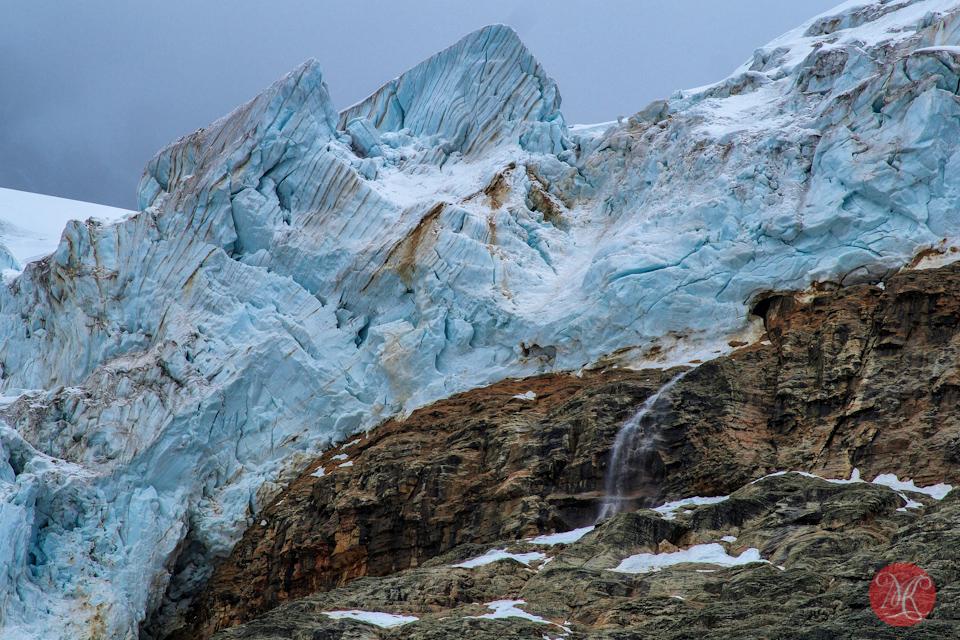 detail glacier jasper alberta landscape