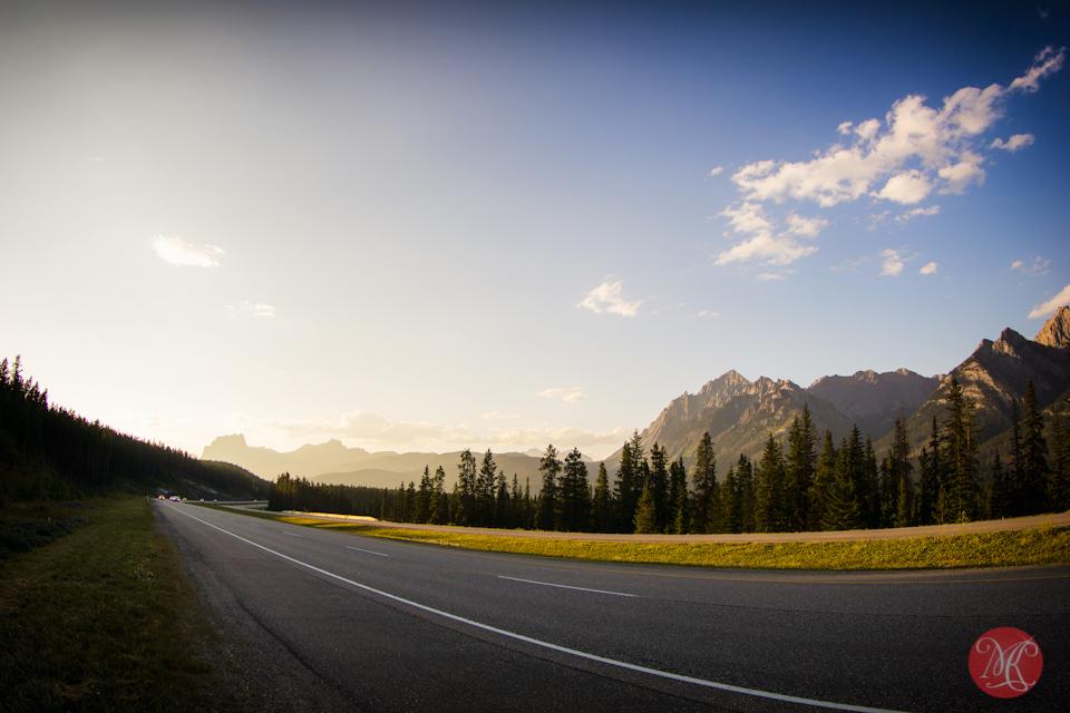 trans-canada alberta landscape banff