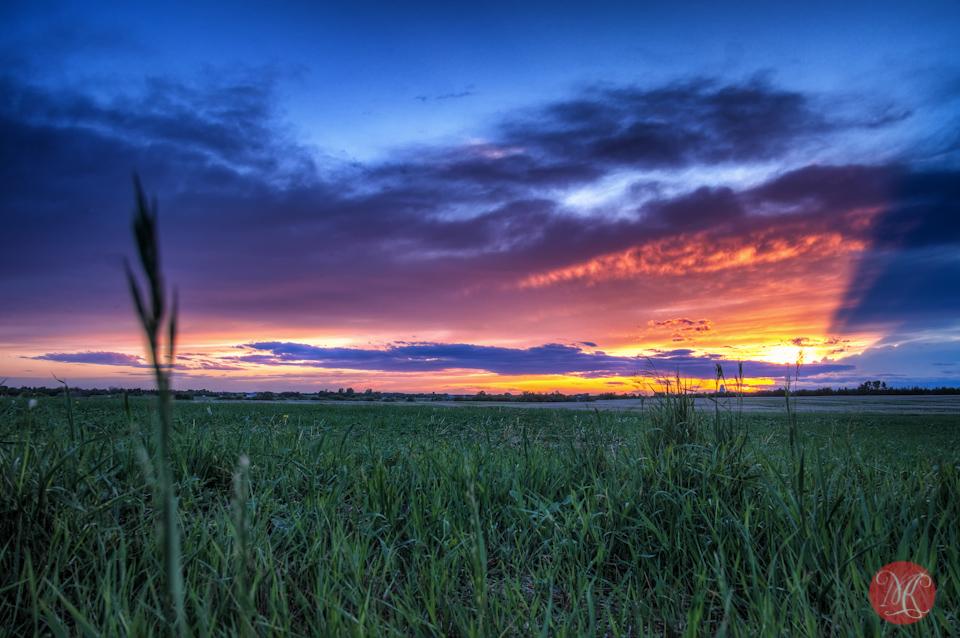 sunset alberta landscape