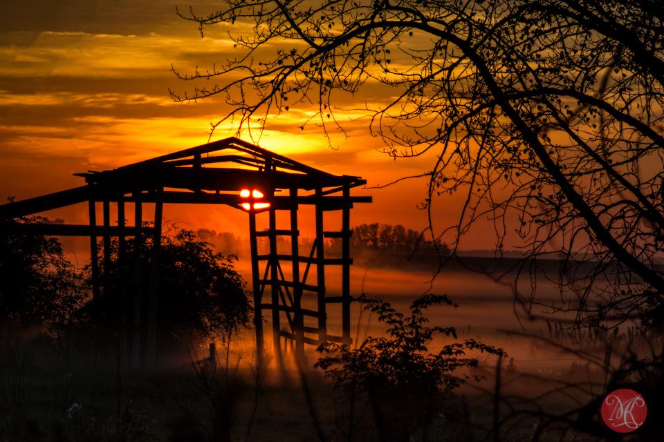 sunrise alberta fog landscape photography