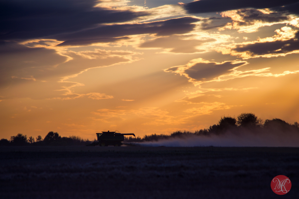 alberta harvest landscape sunset outdoor photography