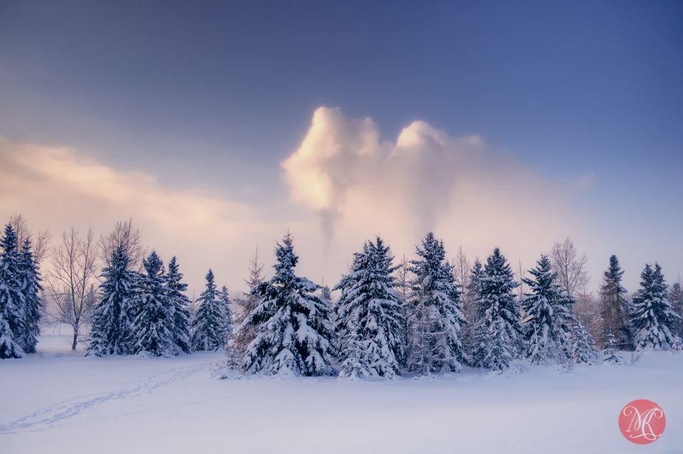 Edmonton winter landscape photography