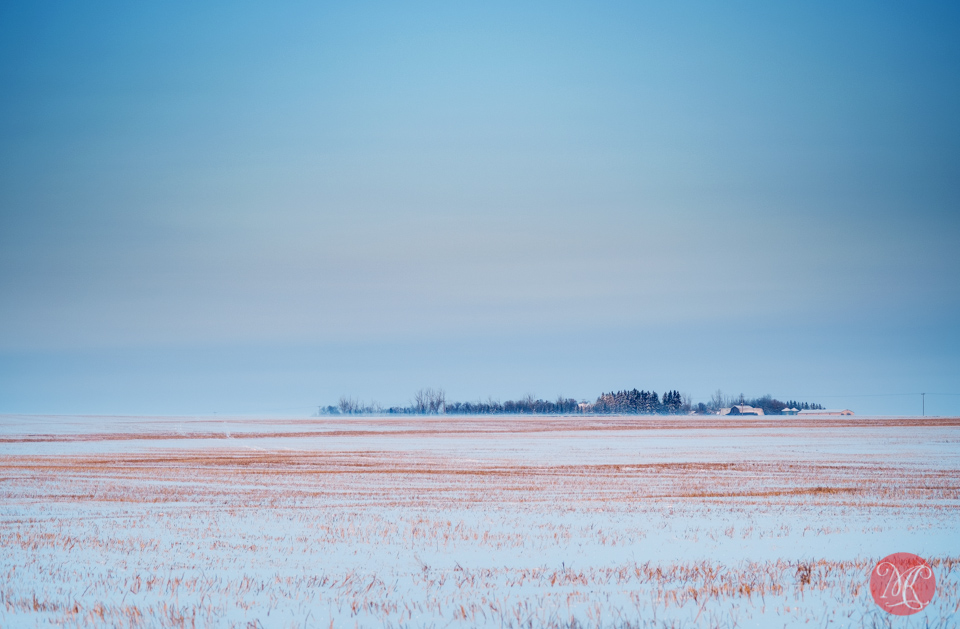 farm alberta prairie sunrise winter snow