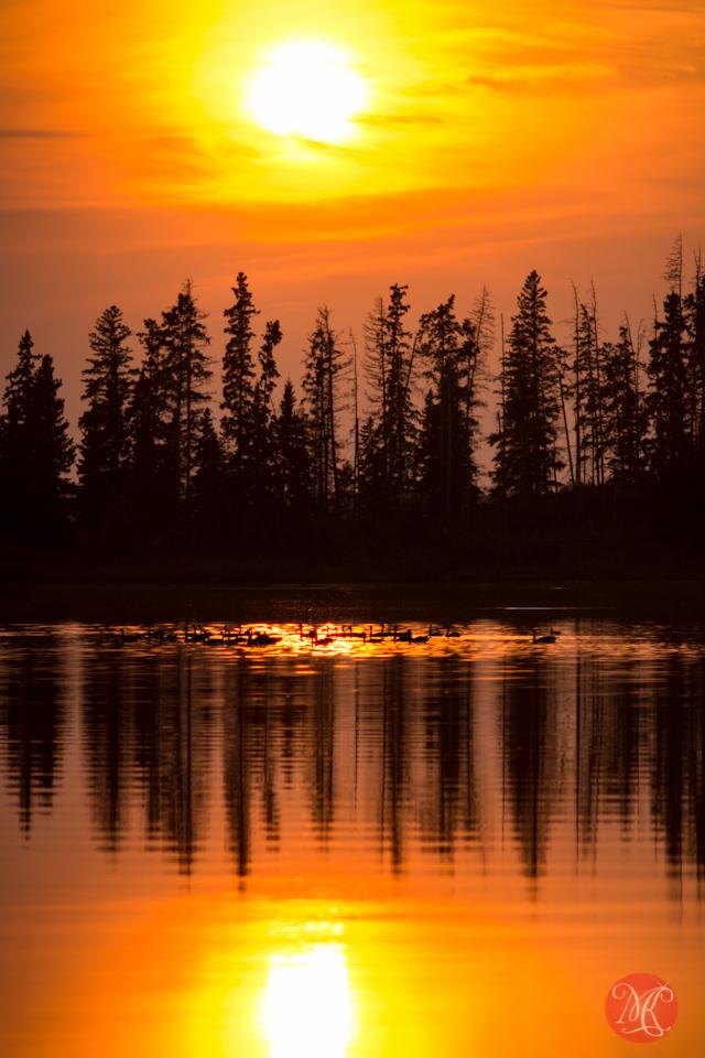 sunset alberta landscape edmonton photographer