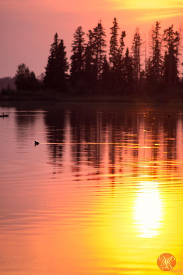 alberta lake reflection landscape photography