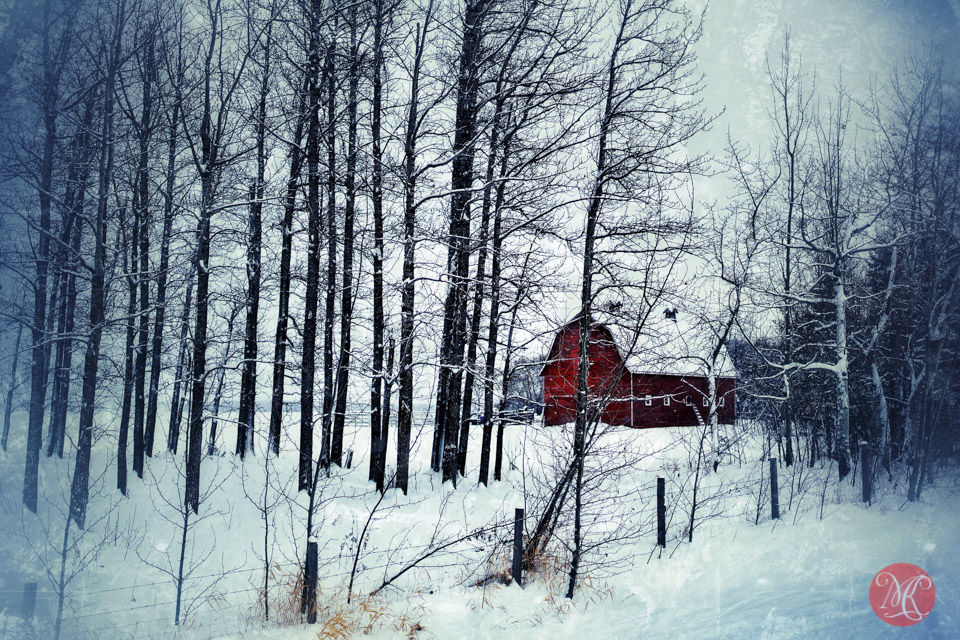 snow trees barn red building alberta landscape