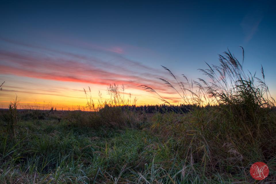 alberta-landscape-sunrise-edmonton-photography
