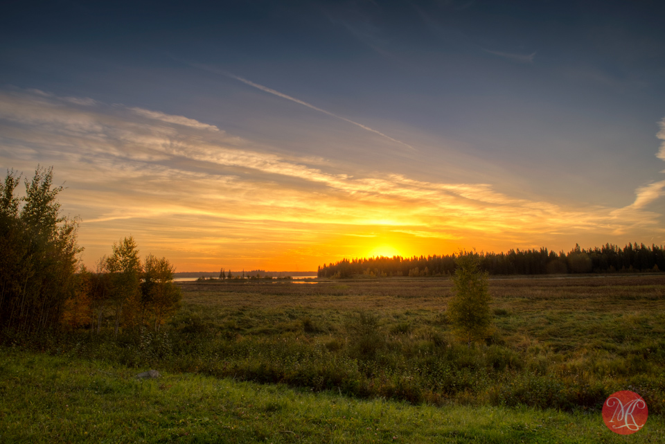 alberta-morning-sunrise-elk-island-landscape-sony-photographer-edmonton
