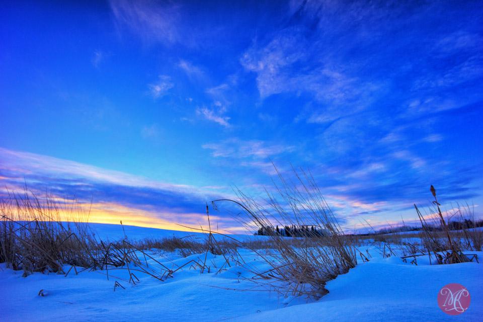alberta landscape winter snow sunset