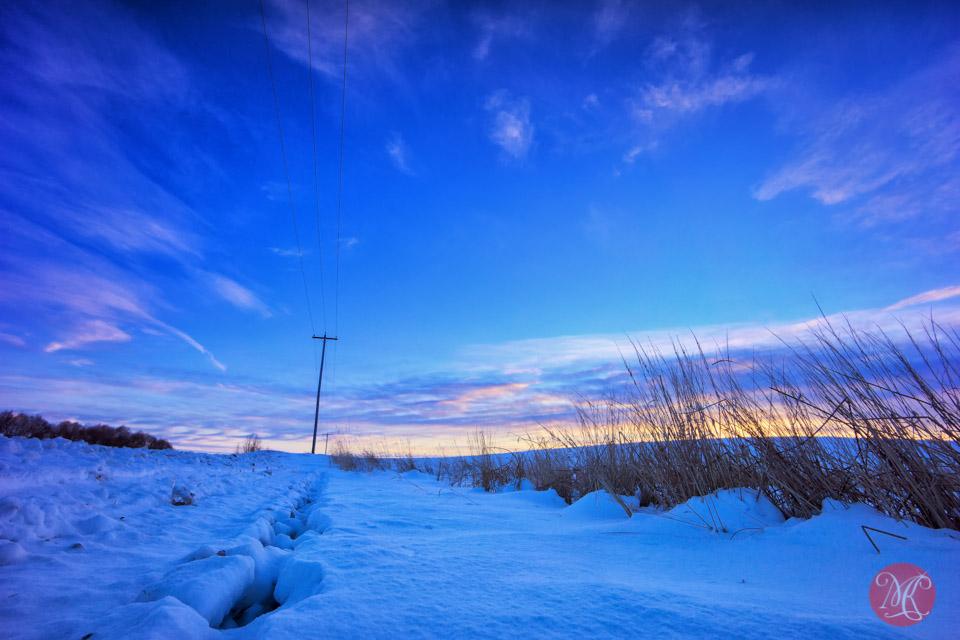 alberta winter snow sunset landscape