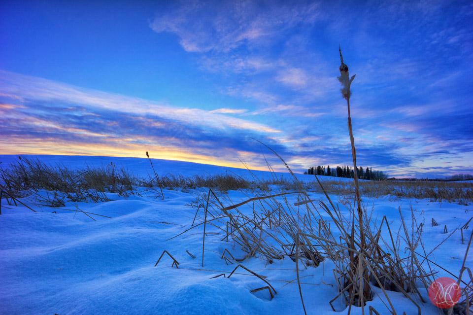 alberta landscape winter sunset