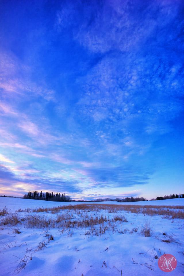 alberta winter landscape
