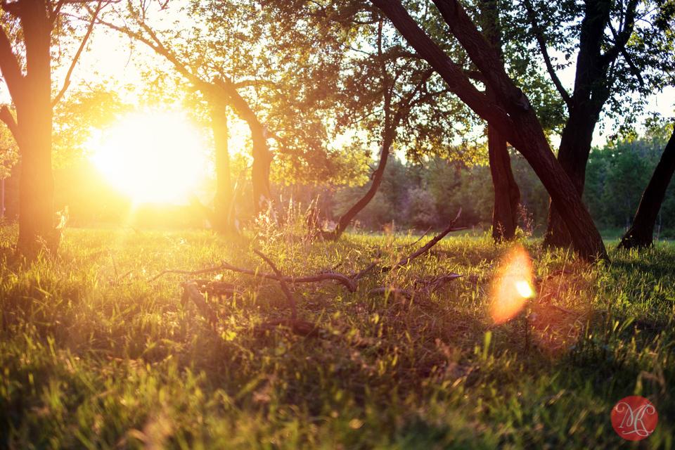 landscape-sunset-farm-alberta-summer-photography