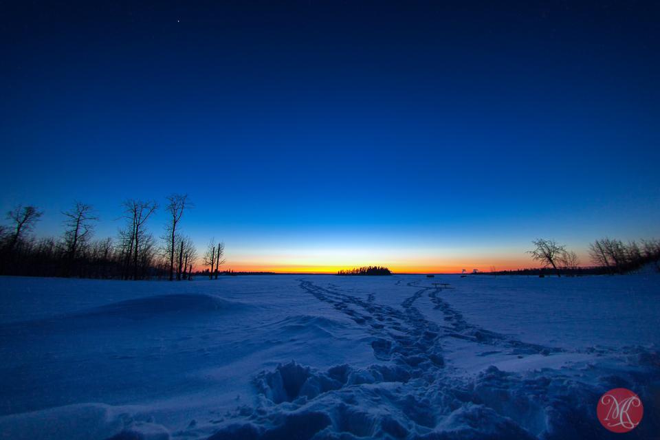 Comet in Night Sky Night Skies at Elk Island