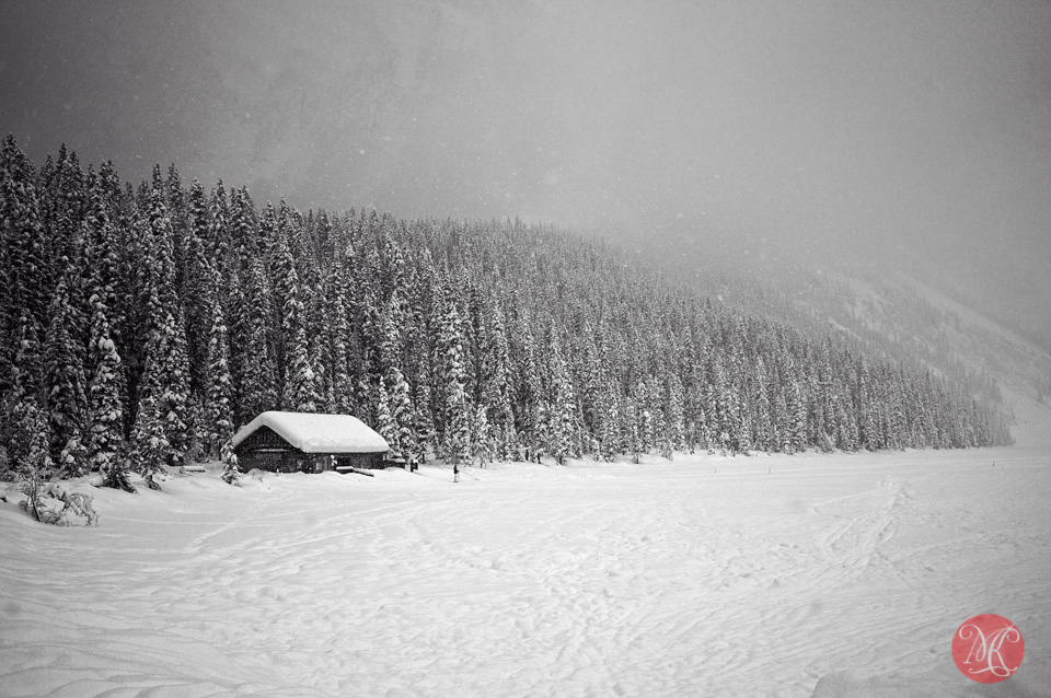 lake louise alberta landscape winter photography