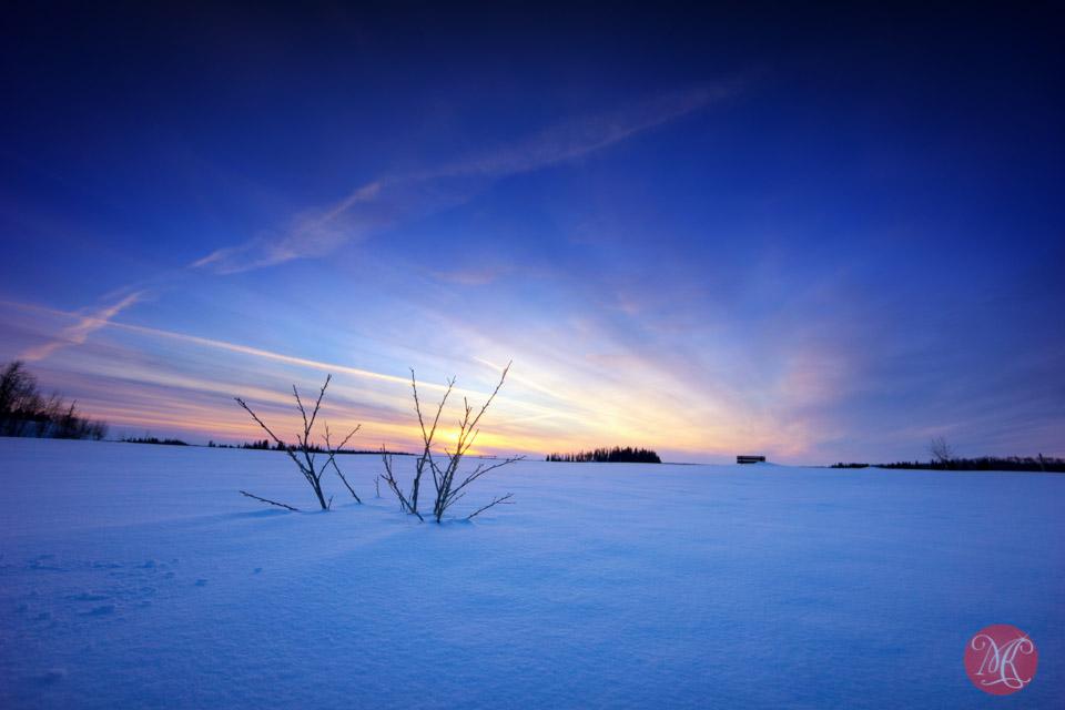 sunset elk island alberta landscape photographer