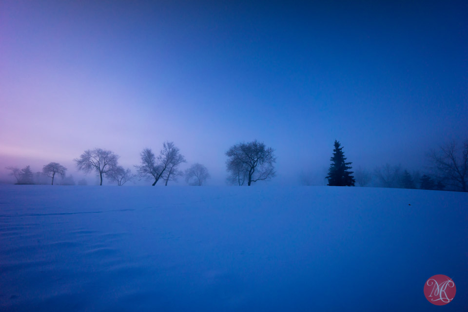 foggy winter sunrise alberta landscape photographer